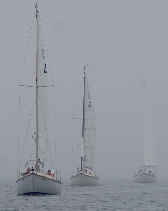 "Sailing out of the Fog ""Irene"""