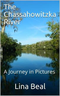 The Chassahowitzka River book cover